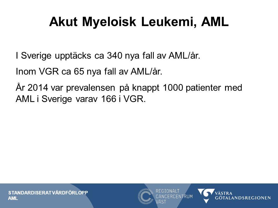 Akut Myeloisk Leukemi, AML I Sverige upptäcks ca 340 nya fall av AML/år.