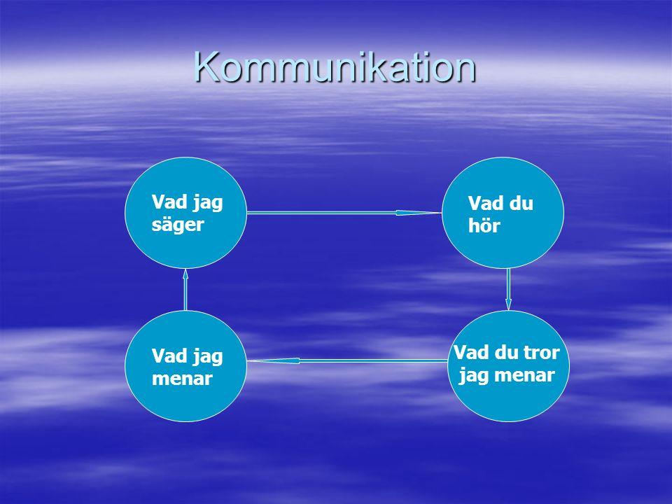 Kommunikation Vad jag menar Vad jag säger Vad du tror jag menar Vad du hör