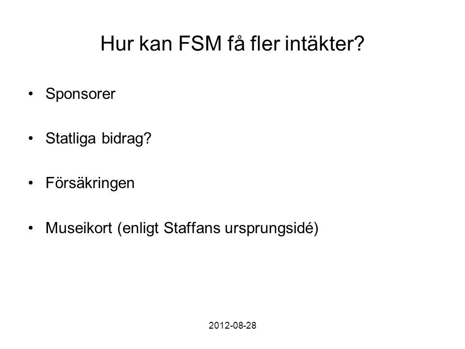 Hur kan FSM få fler intäkter. Sponsorer Statliga bidrag.