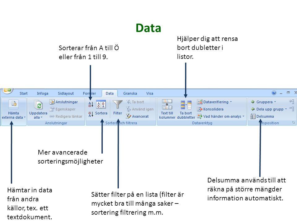 Hämtar in data från andra källor, tex. ett textdokument. Hjälper dig att rensa bort dubletter i listor. Mer avancerade sorteringsmöjligheter Delsumma
