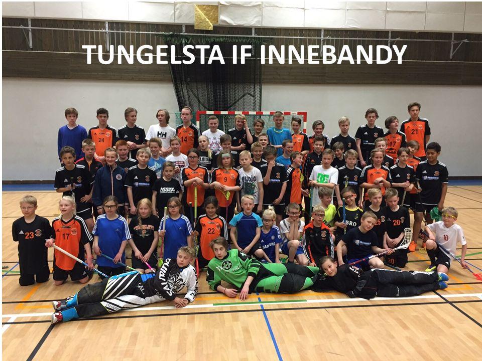 Tungelsta IF Innebandy 2015-08-16