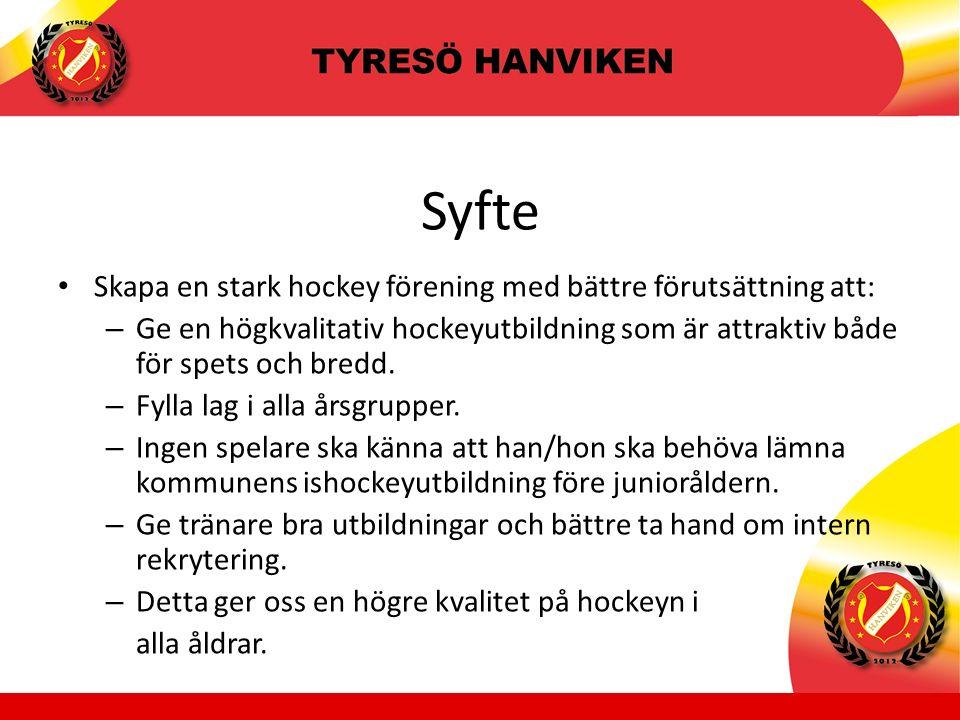 Syfte Skapa en stark hockey förening med bättre förutsättning att: – Ge en högkvalitativ hockeyutbildning som är attraktiv både för spets och bredd.