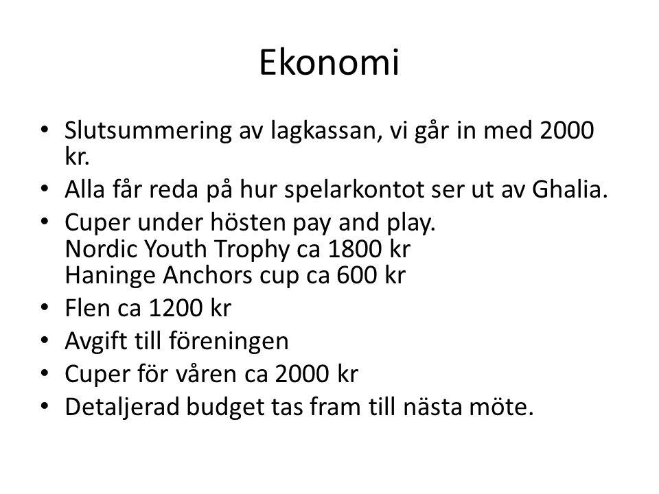 Ekonomi Slutsummering av lagkassan, vi går in med 2000 kr. Alla får reda på hur spelarkontot ser ut av Ghalia. Cuper under hösten pay and play. Nordic