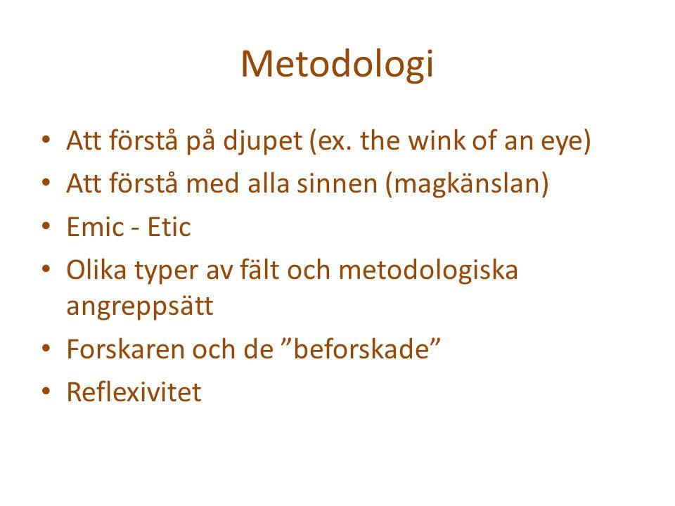 Metodologi Att förstå på djupet (ex.
