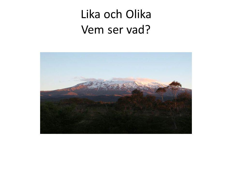 Lika och Olika Vem ser vad?