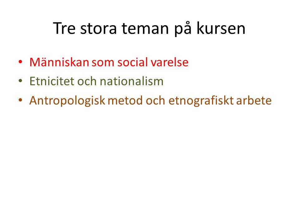 Tre stora teman på kursen Människan som social varelse Etnicitet och nationalism Antropologisk metod och etnografiskt arbete