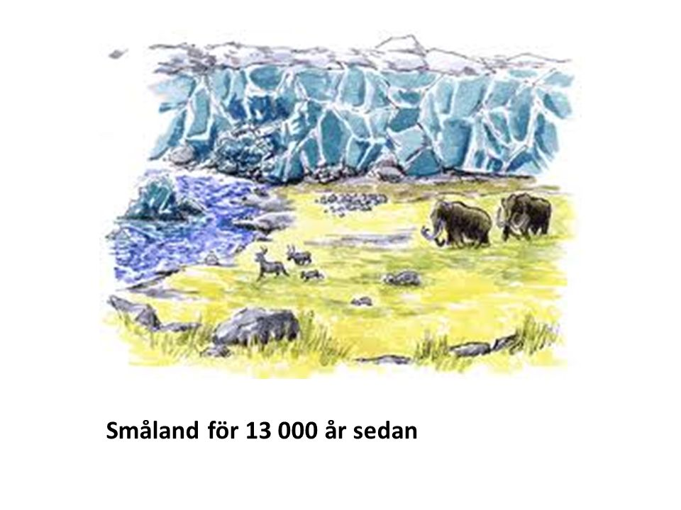 Småland för 13 000 år sedan