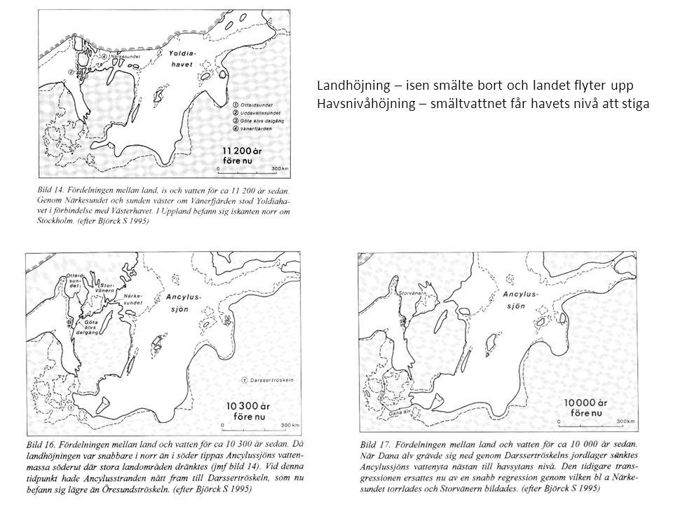 Landhöjning – isen smälte bort och landet flyter upp Havsnivåhöjning – smältvattnet får havets nivå att stiga