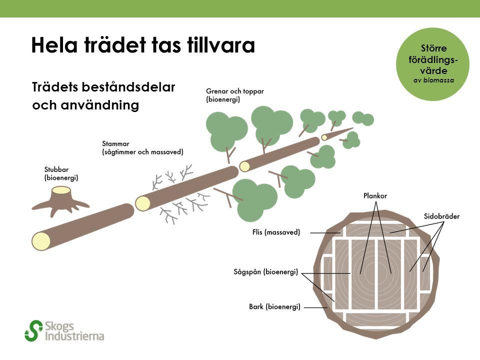 Hela trädet tas tillvara Trädets beståndsdelar och användning Större förädlings- värde av biomassa
