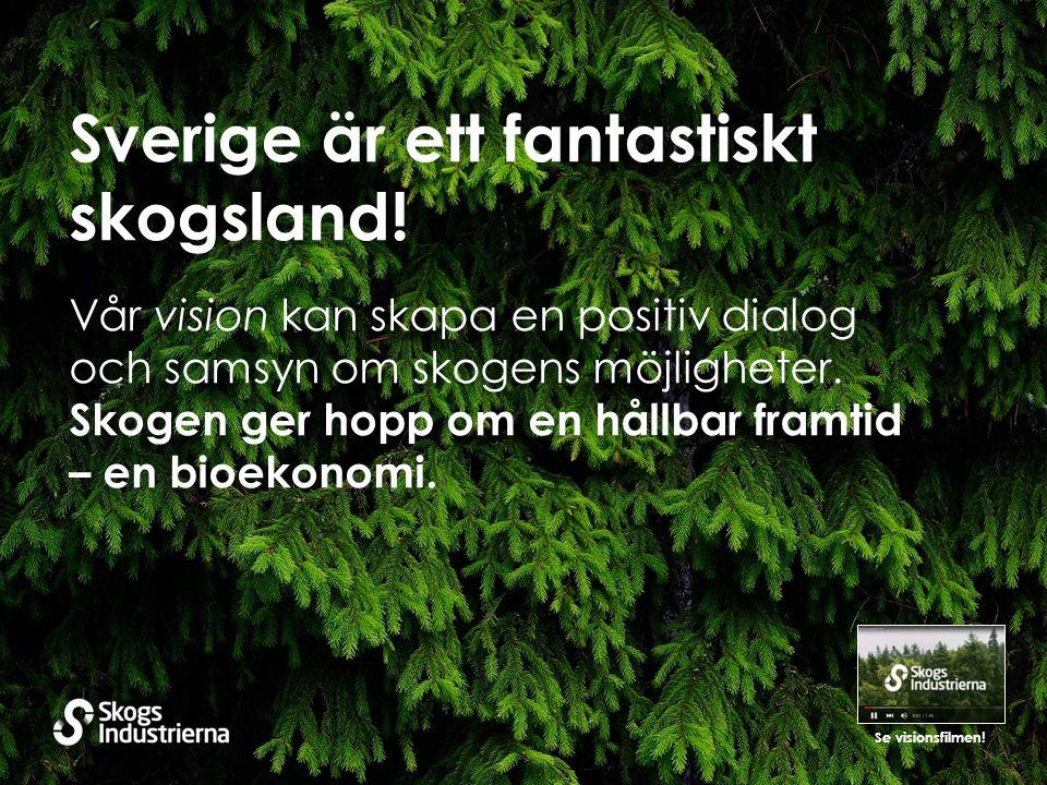 Sverige är ett fantastiskt skogsland.