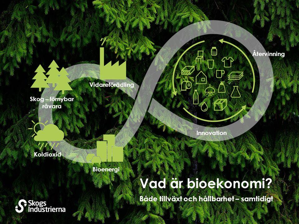 Bioenergi Koldioxid Skog – förnybar råvara Vidareförädling Återvinning Innovation Både tillväxt och hållbarhet – samtidigt Vad är bioekonomi?