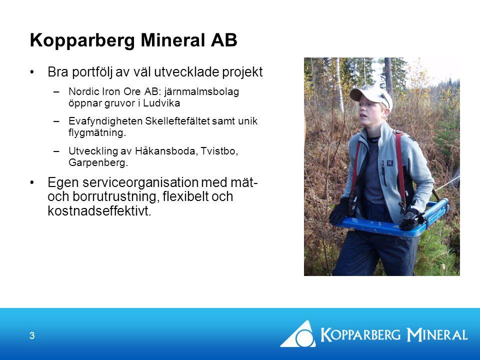 3 Kopparberg Mineral AB Bra portfölj av väl utvecklade projekt –Nordic Iron Ore AB: järnmalmsbolag öppnar gruvor i Ludvika –Evafyndigheten Skelleftefältet samt unik flygmätning.