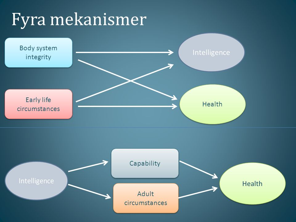 Fyra mekanismer Body system integrity Early life circumstances Capability Adult circumstances Health