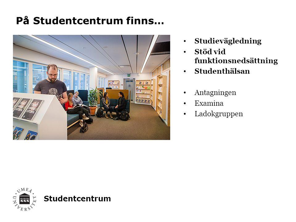 Studentcentrum Studievägledning Stöd vid funktionsnedsättning Studenthälsan Antagningen Examina Ladokgruppen På Studentcentrum finns…
