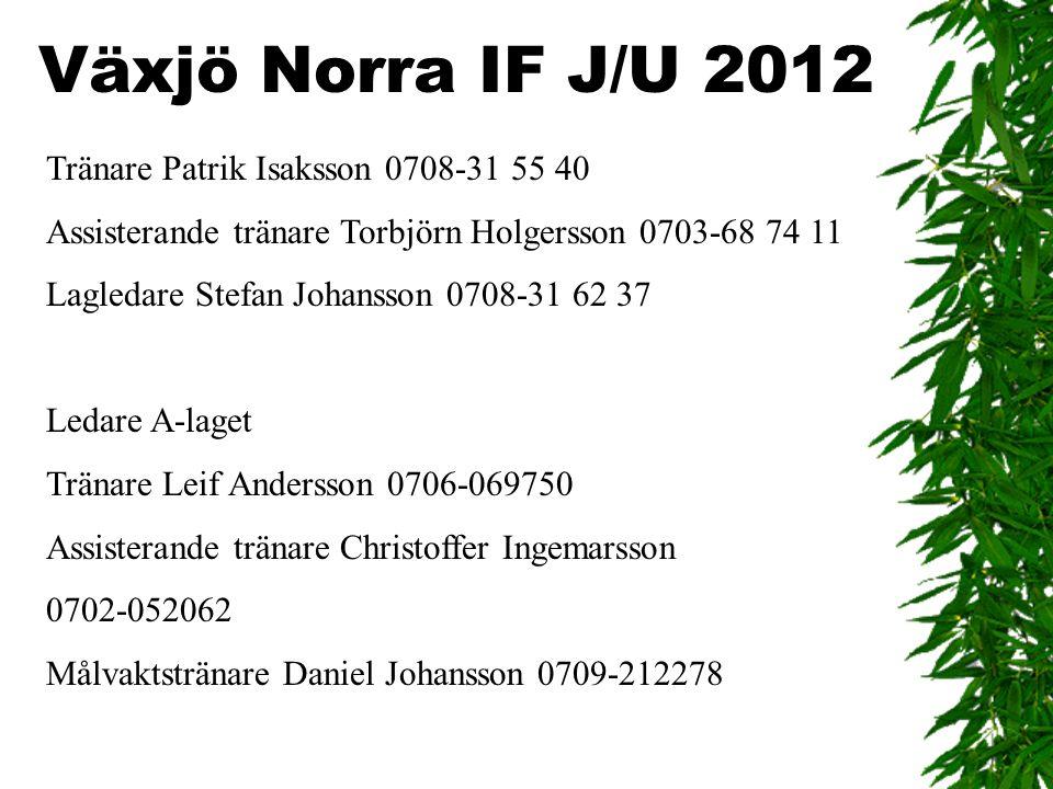 Tränare Patrik Isaksson 0708-31 55 40 Assisterande tränare Torbjörn Holgersson 0703-68 74 11 Lagledare Stefan Johansson 0708-31 62 37 Ledare A-laget T