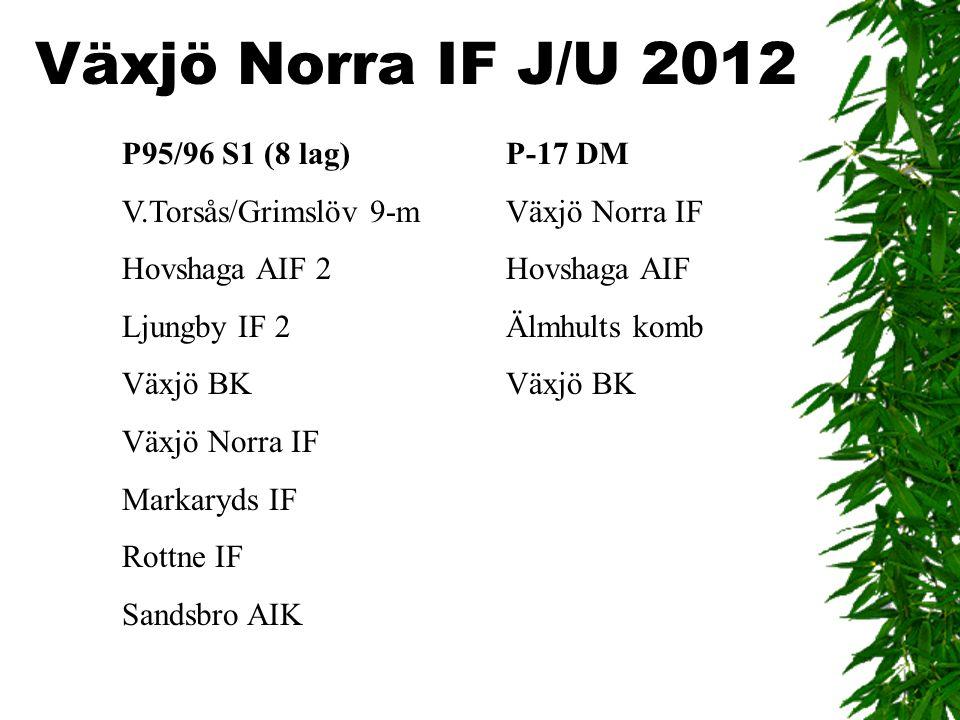 Växjö Norra IF J/U 2012 P95/96 S1 (8 lag) P-17 DM V.Torsås/Grimslöv 9-m Växjö Norra IF Hovshaga AIF 2 Hovshaga AIF Ljungby IF 2 Älmhults komb Växjö BK