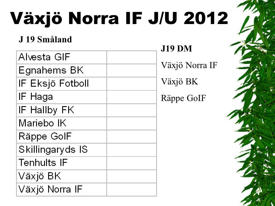 Växjö Norra IF J/U 2012 J 19 Småland J19 DM Växjö Norra IF Växjö BK Räppe GoIF