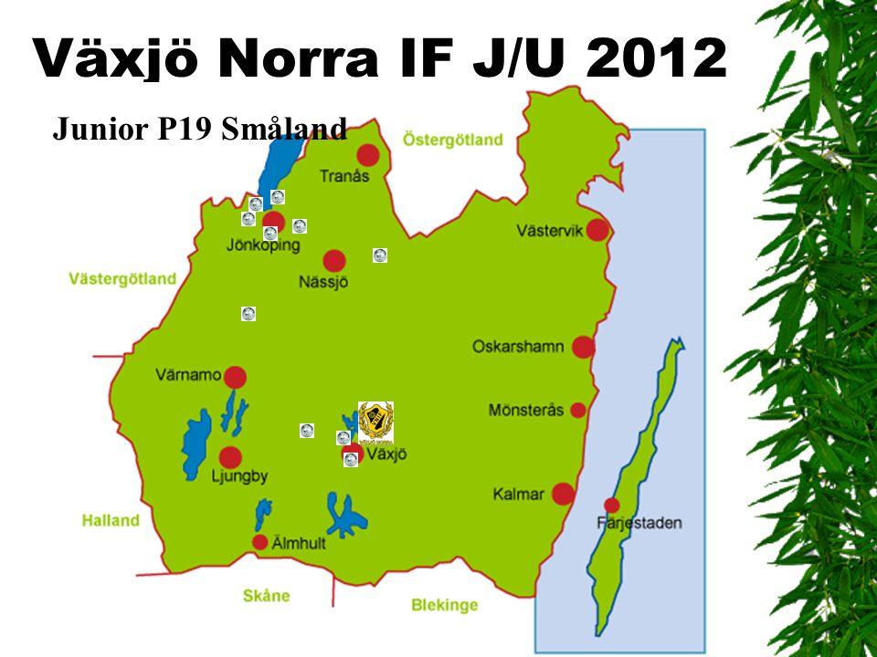 Växjö Norra IF J/U 2012 Junior P19 Småland