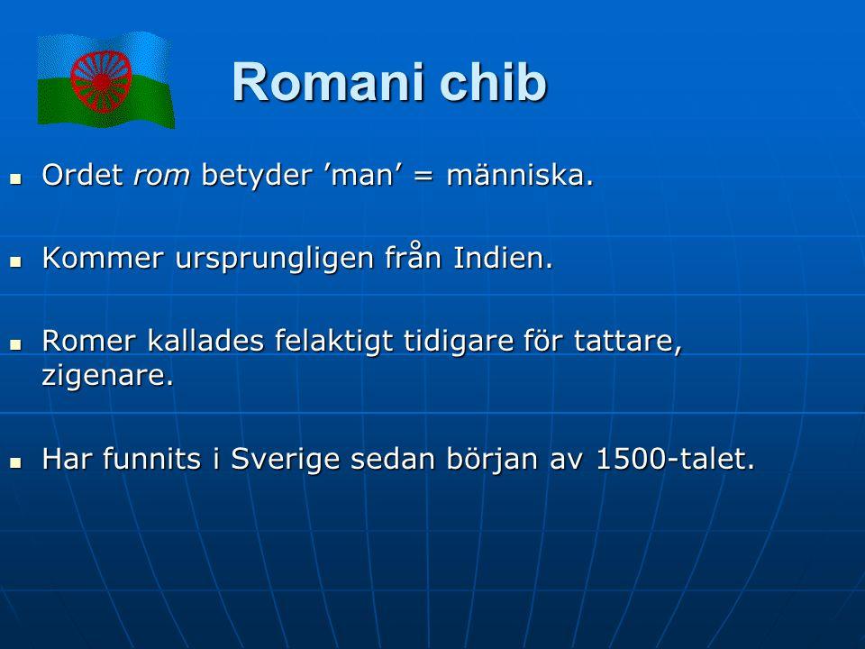 Romani chib Ordet rom betyder 'man' = människa. Ordet rom betyder 'man' = människa.