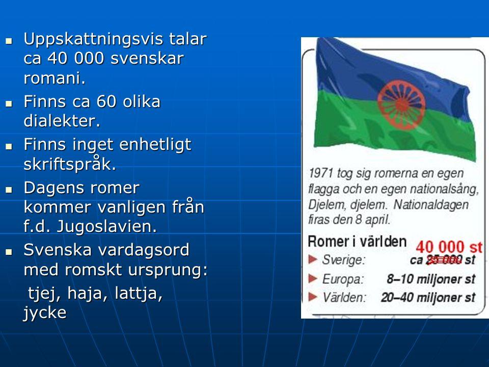 Uppskattningsvis talar ca 40 000 svenskar romani. Uppskattningsvis talar ca 40 000 svenskar romani.