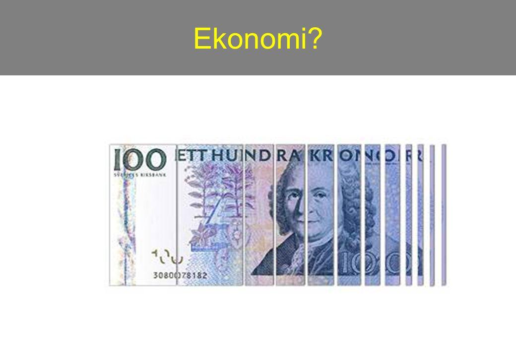 Ekonomi?
