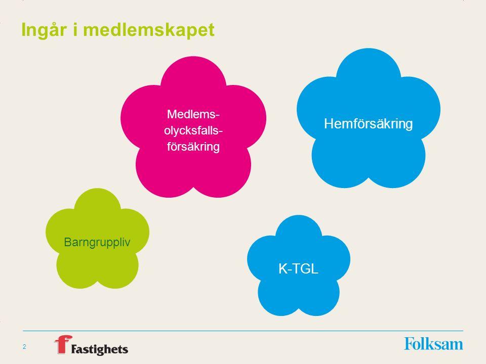 Innehållsyta Rubrikyta 2 Ingår i medlemskapet Barngruppliv K-TGL Hemförsäkring Medlems- olycksfalls- försäkring