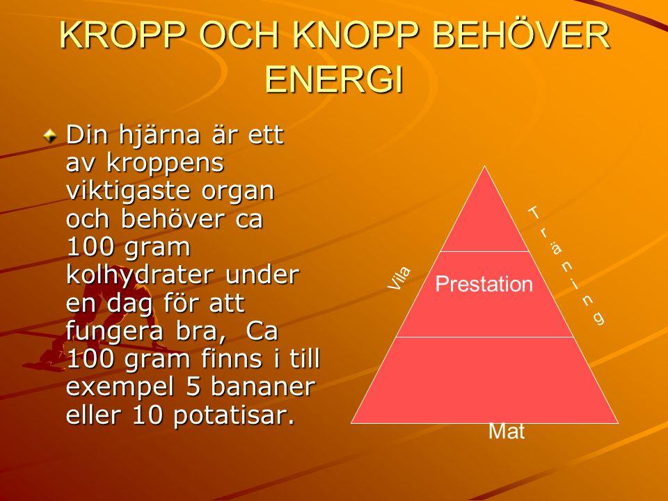 KROPP OCH KNOPP BEHÖVER ENERGI Din hjärna är ett av kroppens viktigaste organ och behöver ca 100 gram kolhydrater under en dag för att fungera bra, Ca 100 gram finns i till exempel 5 bananer eller 10 potatisar.