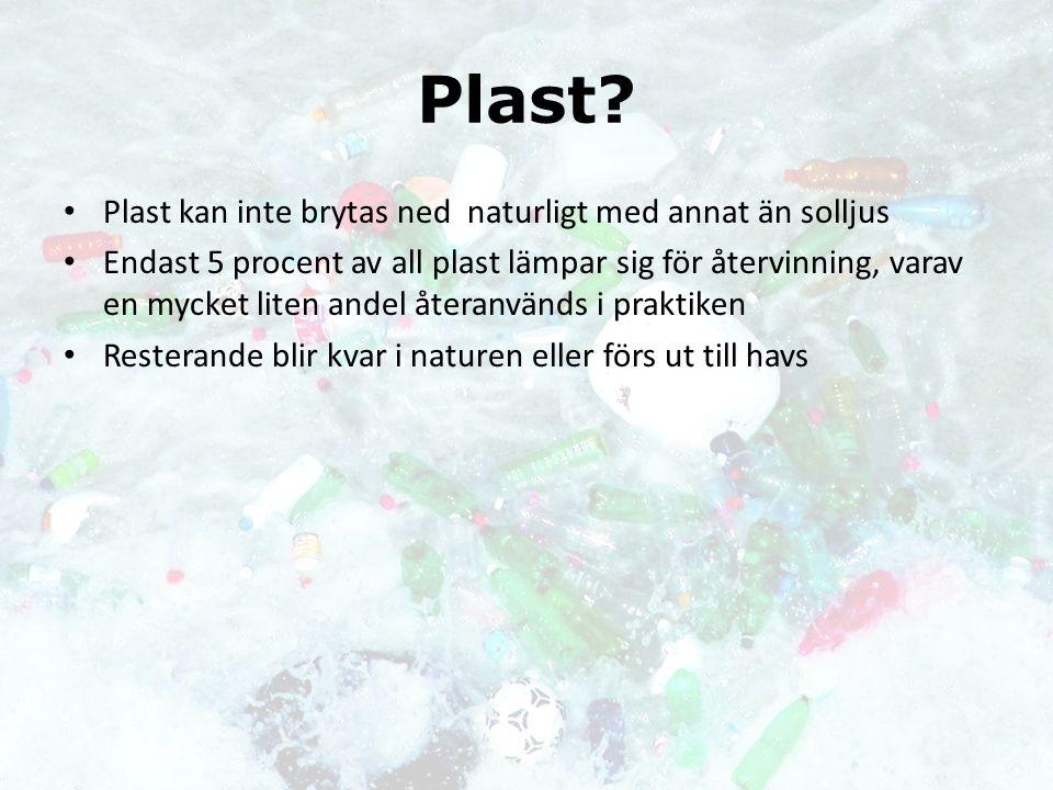 Plast? Plast kan inte brytas ned naturligt med annat än solljus Endast 5 procent av all plast lämpar sig för återvinning, varav en mycket liten andel