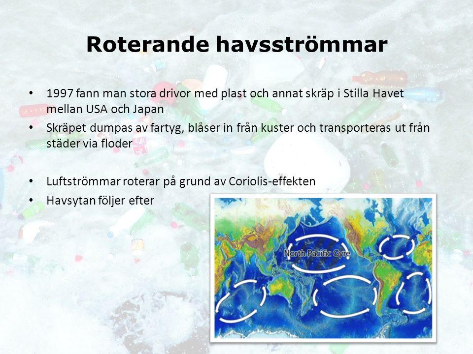 Roterande havsströmmar 1997 fann man stora drivor med plast och annat skräp i Stilla Havet mellan USA och Japan Skräpet dumpas av fartyg, blåser in från kuster och transporteras ut från städer via floder Luftströmmar roterar på grund av Coriolis-effekten Havsytan följer efter
