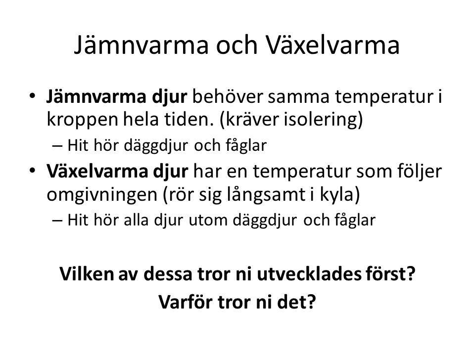 Jämnvarma och Växelvarma Jämnvarma djur behöver samma temperatur i kroppen hela tiden.