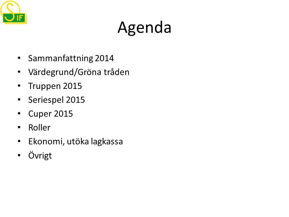 Agenda Sammanfattning 2014 Värdegrund/Gröna tråden Truppen 2015 Seriespel 2015 Cuper 2015 Roller Ekonomi, utöka lagkassa Övrigt