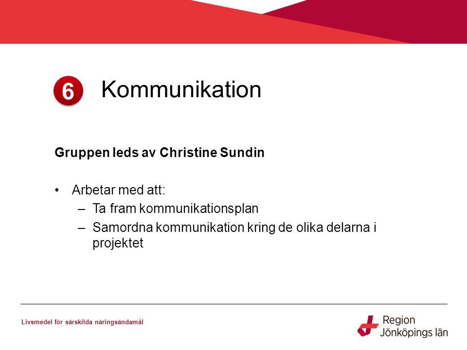 6. Kommunikation Livsmedel för särskilda näringsändamål Gruppen leds av Christine Sundin Arbetar med att: –Ta fram kommunikationsplan –Samordna kommun