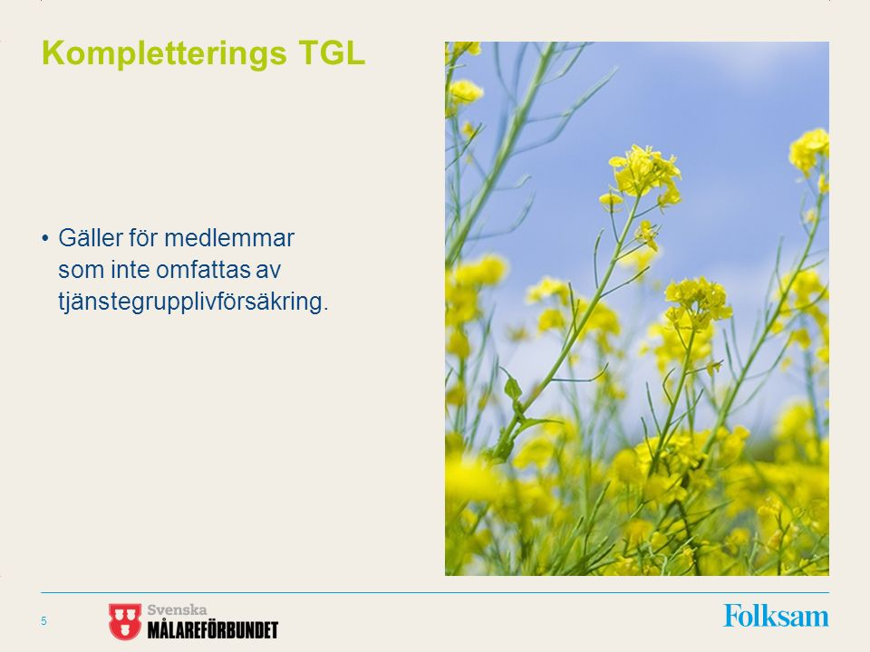 Innehållsyta Rubrikyta Kompletterings TGL Gäller för medlemmar som inte omfattas av tjänstegrupplivförsäkring.