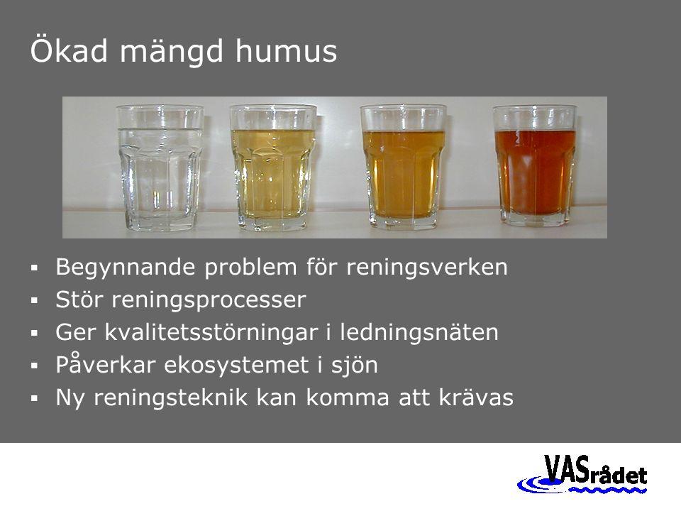 Humushalten har redan ökat Humushalt COD Medelvattenföring Norrström m 3 /s 1980 1985 1990 1995 2000 2003 m 3 /s 300 250 200 150 100 50 0 98765432109876543210 mg/liter