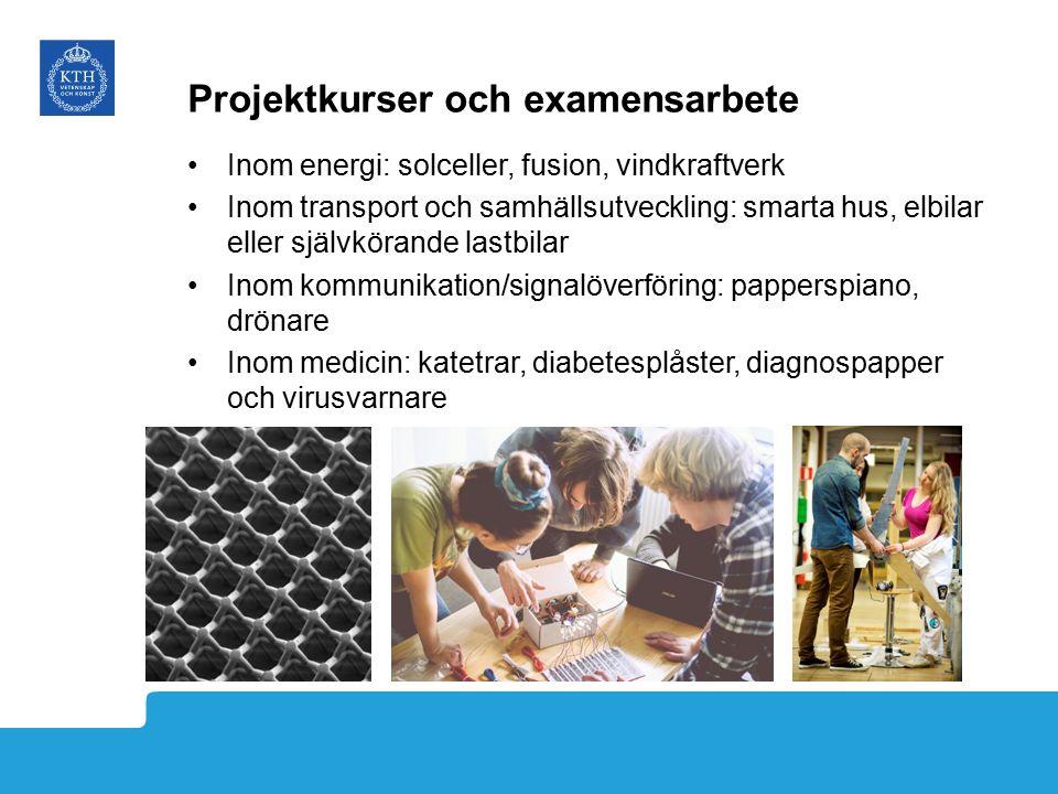 Projektkurser och examensarbete Inom energi: solceller, fusion, vindkraftverk Inom transport och samhällsutveckling: smarta hus, elbilar eller självkö