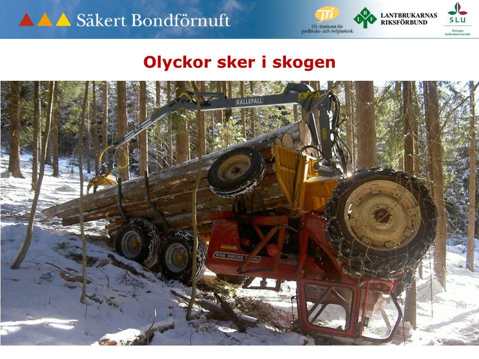Olyckor sker i skogen