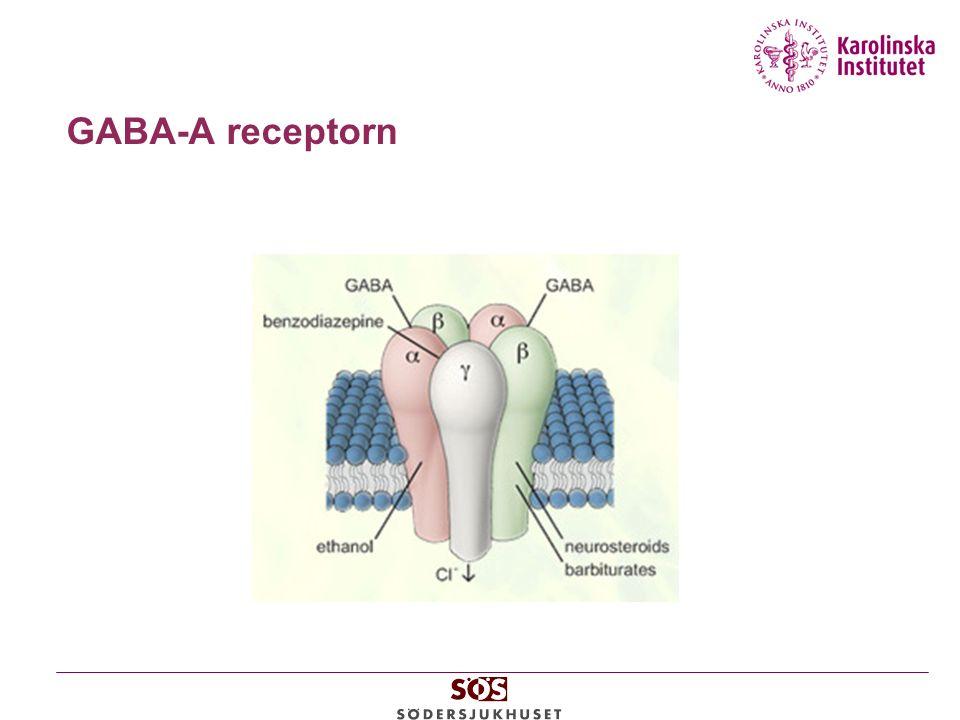 GABA-A receptorn