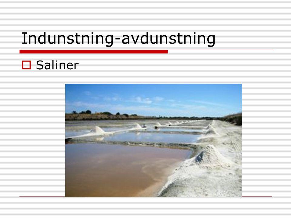 Indunstning-avdunstning  Saliner