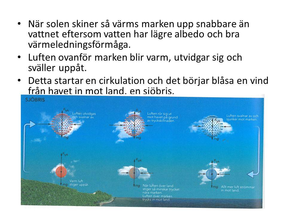 När solen skiner så värms marken upp snabbare än vattnet eftersom vatten har lägre albedo och bra värmeledningsförmåga.
