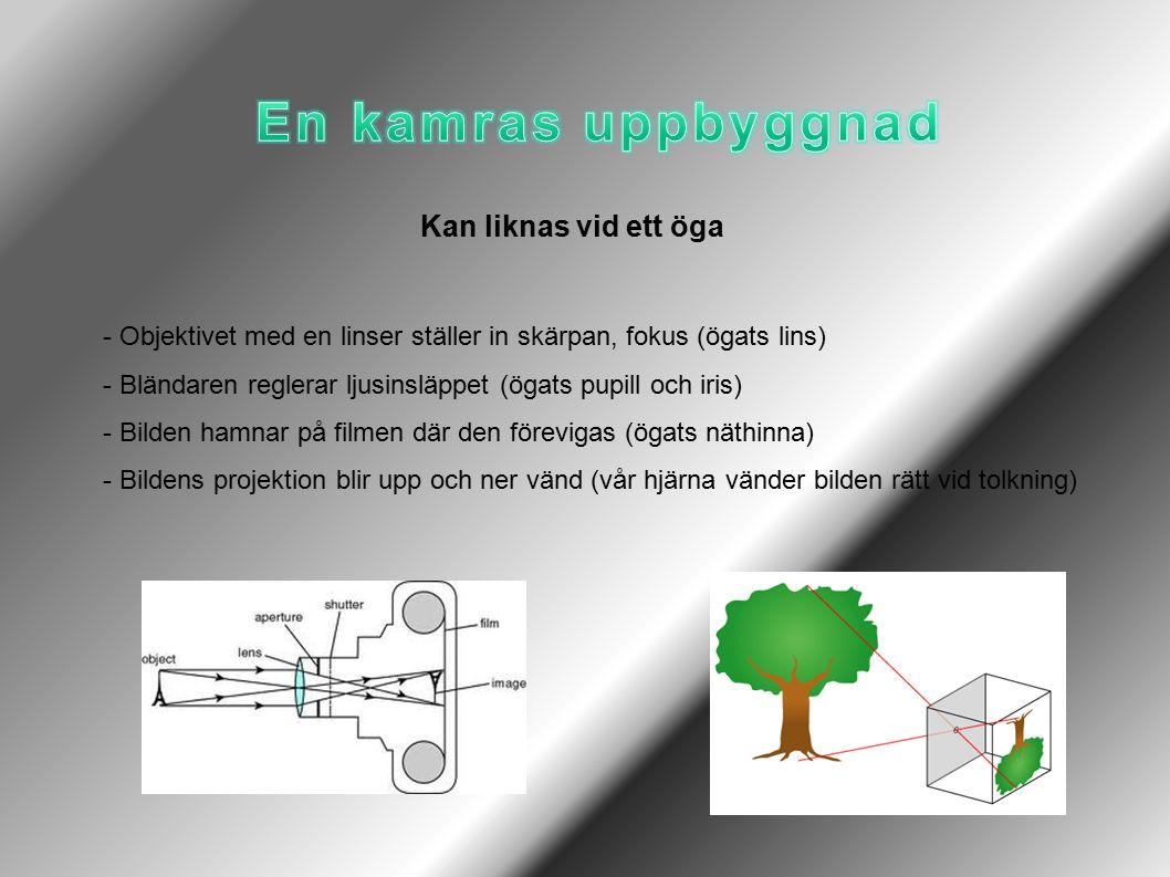 Kan liknas vid ett öga - Objektivet med en linser ställer in skärpan, fokus (ögats lins) - Bländaren reglerar ljusinsläppet (ögats pupill och iris) - Bilden hamnar på filmen där den förevigas (ögats näthinna) - Bildens projektion blir upp och ner vänd (vår hjärna vänder bilden rätt vid tolkning)