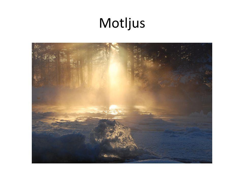 Motljus