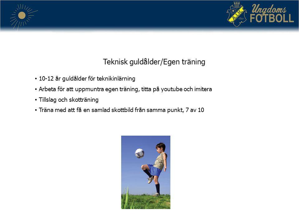 Teknisk guldålder/Egen träning 10-12 år guldålder för teknikinlärning Arbeta för att uppmuntra egen träning, titta på youtube och imitera Tillslag och skotträning Träna med att få en samlad skottbild från samma punkt, 7 av 10