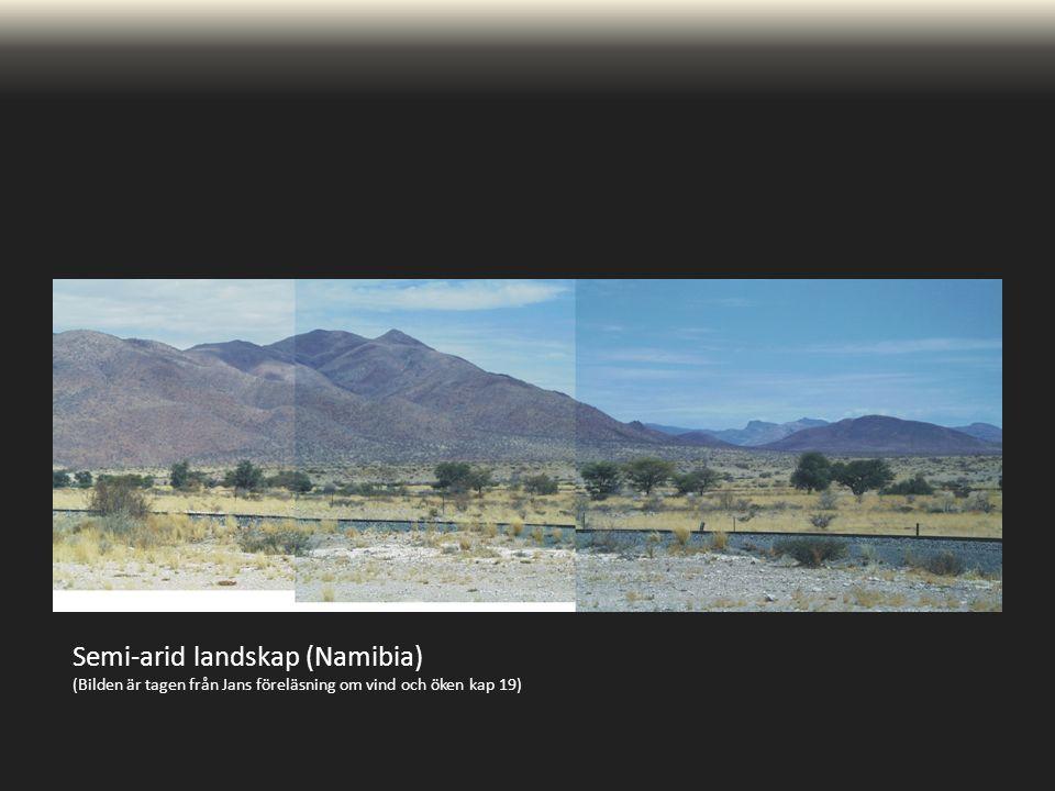 Semi-arid landskap (Namibia) (Bilden är tagen från Jans föreläsning om vind och öken kap 19)