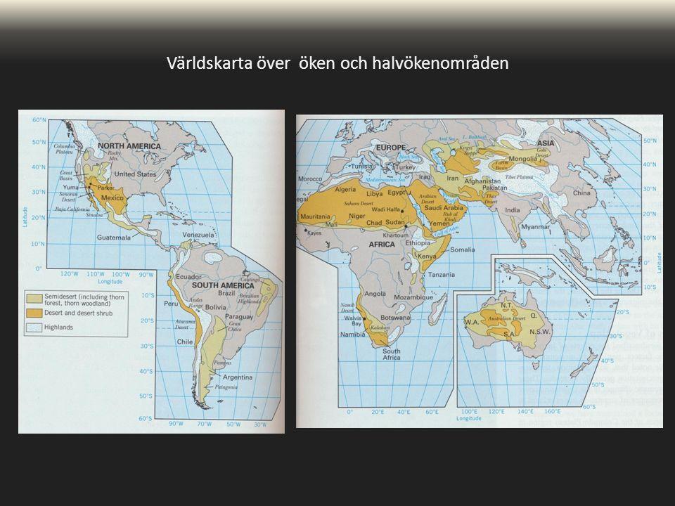 Världskarta över öken och halvökenområden