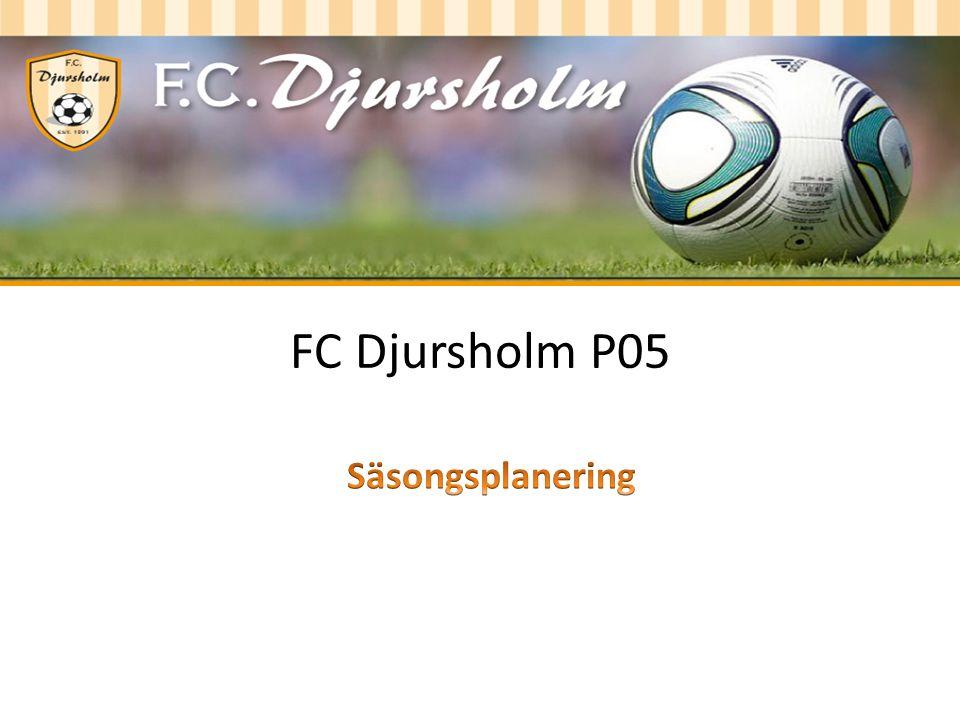 FC Djursholm P05
