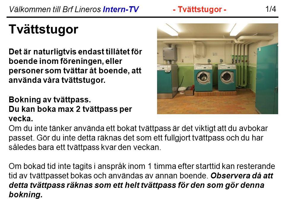 Välkommen till Brf Lineros Intern-TV- Tvättstugor - 1/4 Tvättstugor Det är naturligtvis endast tillåtet för boende inom föreningen, eller personer som