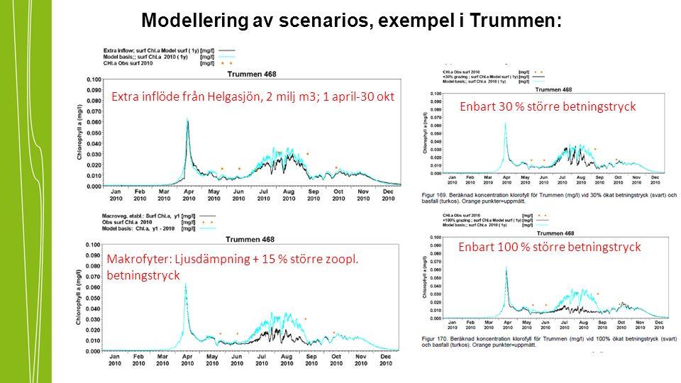 Modellering av scenarios, exempel i Trummen: Makrofyter: Ljusdämpning + 15 % större zoopl.