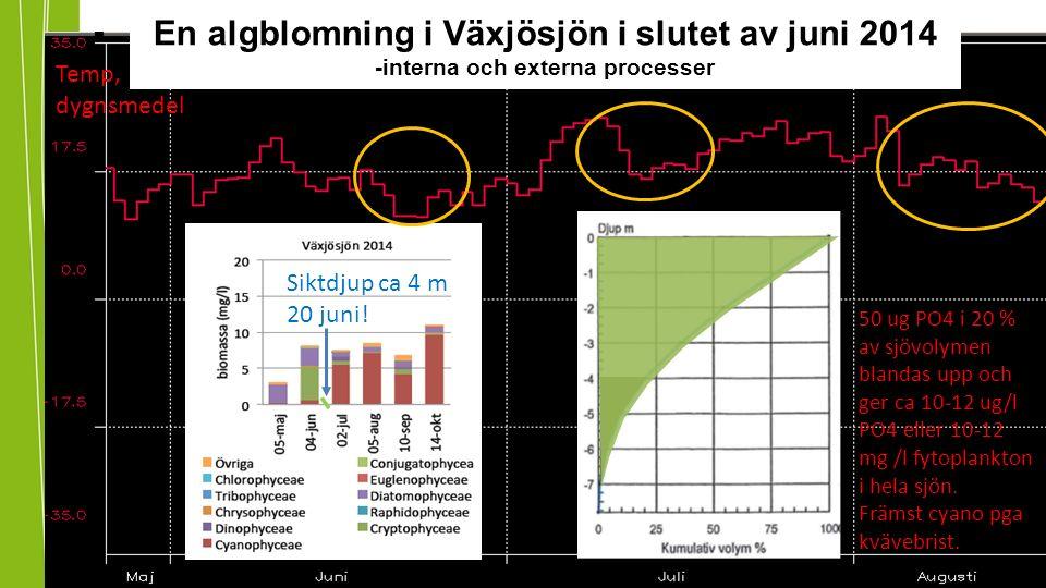 En algblomning i Växjösjön i slutet av juni 2014 -interna och externa processer Siktdjup ca 4 m 20 juni.