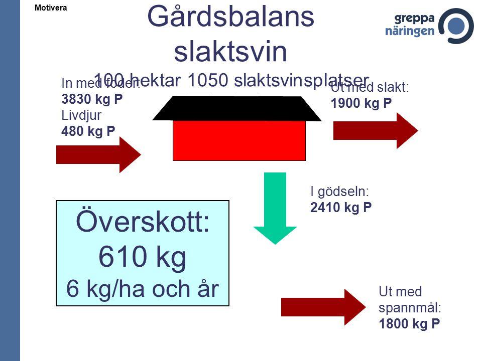 Motivera Gårdsbalans slaktsvin 100 hektar 1050 slaktsvinsplatser In med foder: 3830 kg P Livdjur 480 kg P Ut med slakt: 1900 kg P I gödseln: 2410 kg P