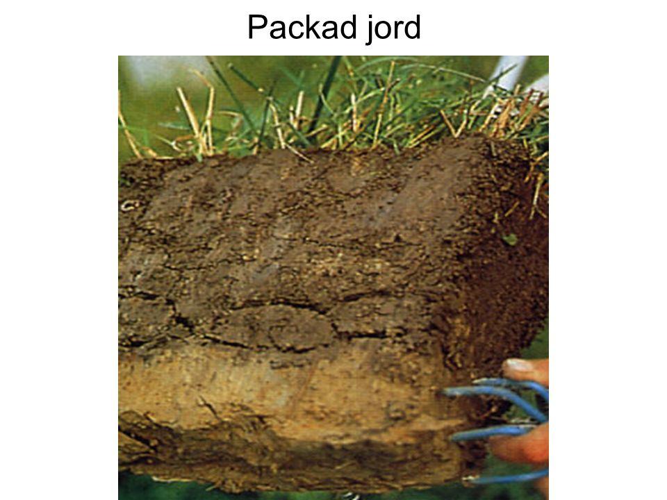 Packad jord